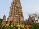 2012-12-14 to 18, Bodh Gaya: Views and impressions from Kagyu Monlam