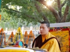 2012-12-17, Bodhgaya: Kagyu Monlam morning session of prayers and aspirations under Bodhi Tree