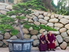 Karmapa visits Taiwan: Grand Puja for the swift return of Shamar Rinpoche