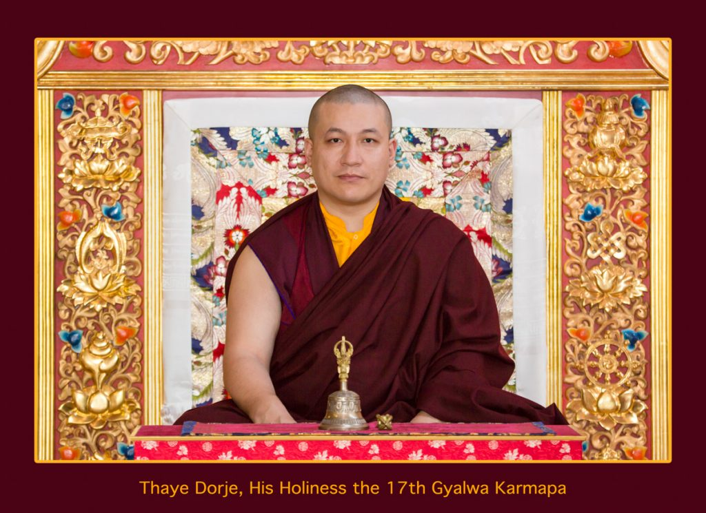 Official Portraits of HH The 17th Gyalwa Karmapa Trinley Thaye Dorje