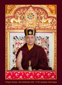 Official Portraits of HH The 17th Gyalwa Karmapa Trinley Thaye D