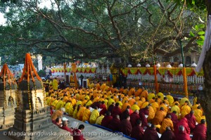 Kagyu Monlam prayers under Bodhi Tree