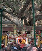 Karmapa-biography-2008