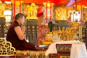 The 17th Gyalwa Karmapa in Taiwan 2015