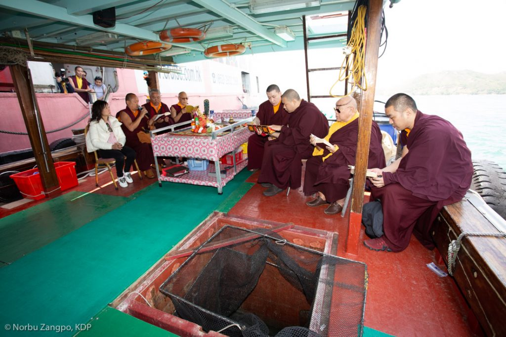 Karmapa leads a traditional fish release ceremony