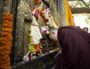 Thaye Dorje, His Holiness the 17th Gyalwa Karmapa, at the Kagyu Monlam in Bodh Gaya, December 2018