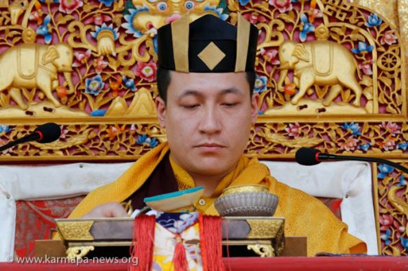 2012-12-14-to-18-Portraits-of-Gyalwa-Karmapa-Rinpoches-and-high-lamas-from-Kagyu-Monalm